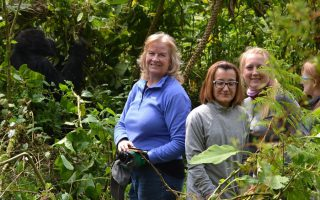 3 Days Lowland Gorilla Tracking